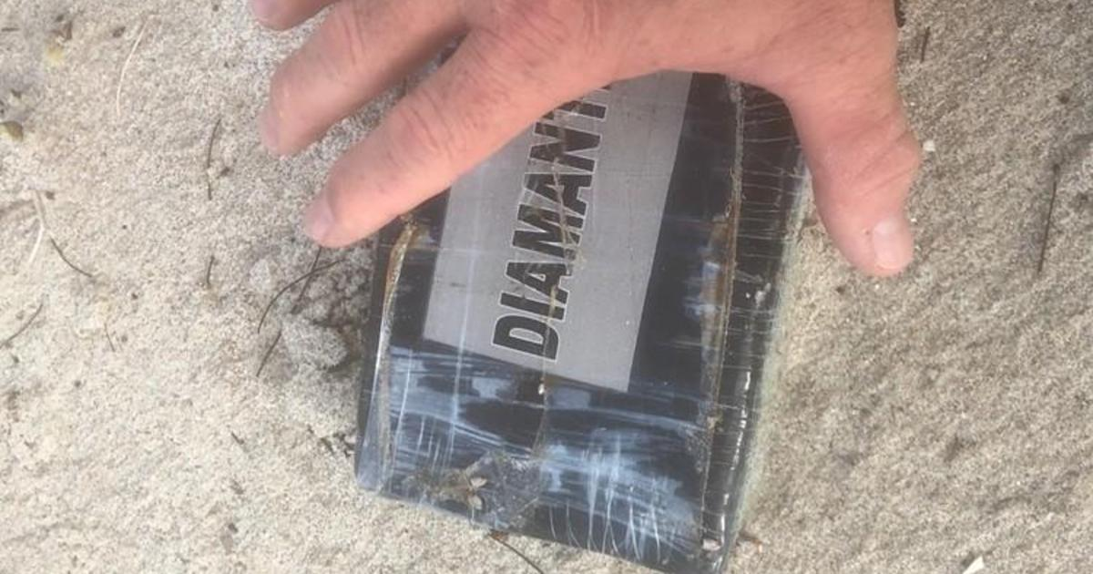 Bricks of Cocaine Wash Ashore in Florida from Hurricane Dorian Waves
